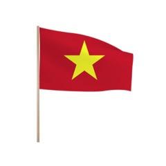 Zwaaivlaggetjes Vietnam