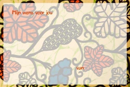 Extra wensenkaartjes Anansi Pansi oranje