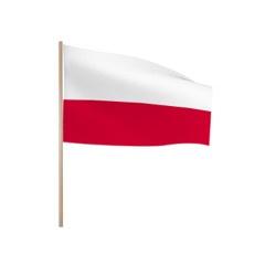 Zwaaivlaggetjes Polen
