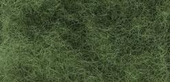 WLS FP178 Green