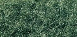 WLS FL636 Dark Green