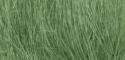 WLS FG174 Medium Green