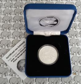 """België 10 euromunt 2019 """"Bruegel - Renaissance"""", proof, zilver in blauw doosje met certificaat"""
