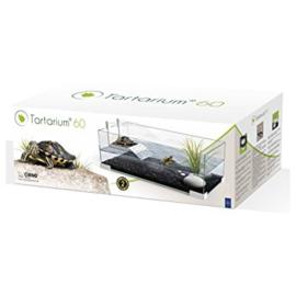 Turtle tartarium 80 wit