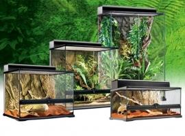 Exo Terra Glass Terrarium 60x45x45
