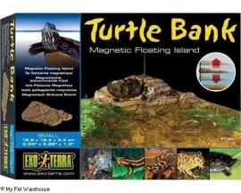 Turtle bank large
