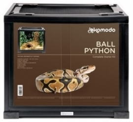 STARTER KIT BALL PYTHONS