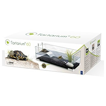 Turtle tartarium 60 wit
