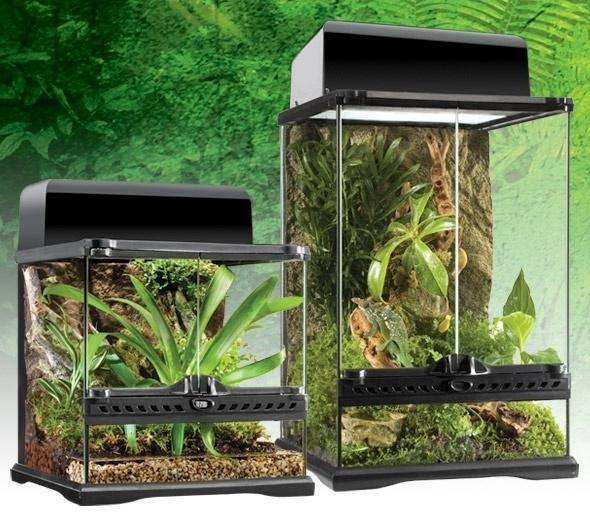 Exo Terra Glass Terrarium Nano 20x20x30