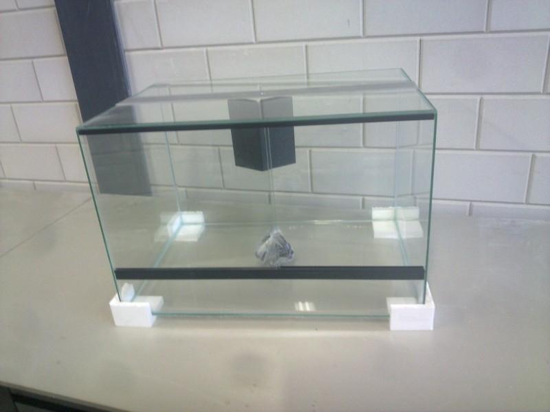 Glas terrarium `Basic+` 50x35x35