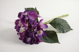 Kunst Hortensia Paars