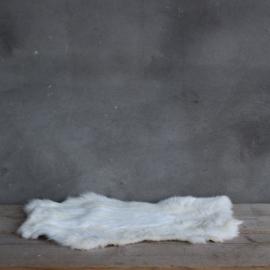 Konijnenvachtje  Wit