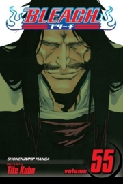 Bleach Vol.55