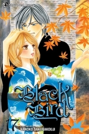 Black Bird Vol.17
