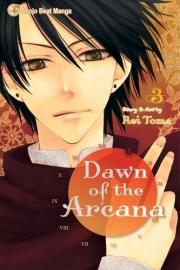 Dawn of the Arcana  Vol.3