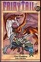 Fairy Tail  Vol 19
