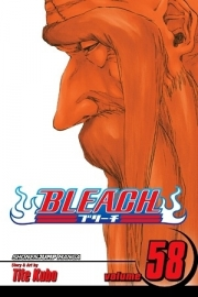 Bleach Vol.58