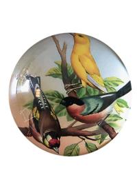 Presse papier met vogels