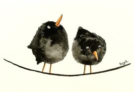 Vogeltjes 5