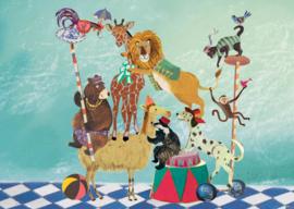 Dierentoren circus