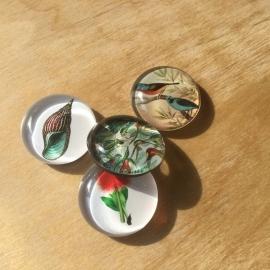 10 Magneten van glas Ø 3 cm Natuur