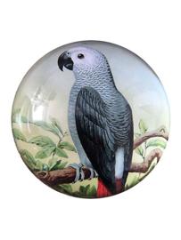 Presse papier papegaai