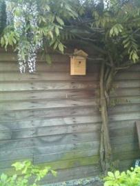 waar hang ik mijn nestkast of vogelhuisje op