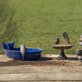 Ovaal vogelbad blauw