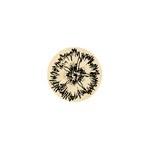 Dianthus 13 mm