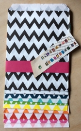 10 Gift Bags  ZIG-ZAG, 13 by 16,5 cm
