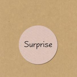 5 Surprise stickers rond 4,7 cm zand