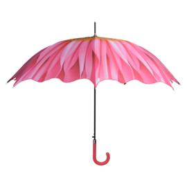 Bloemenparaplu Dahlia