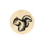 Eichhörnchen 19 mm