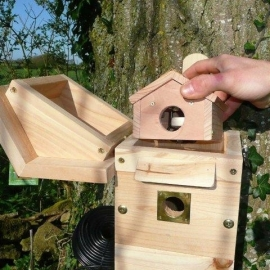 Nestbox with camera, multi-purpose