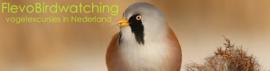vogelexcursies van FlevoBirdwatching