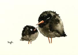 Vogeltjes 3