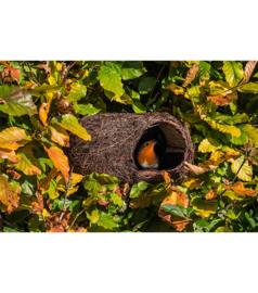 Roodborst nestbuidel van kreupelhout