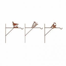 Rusted bird feeder or hanging basket hook