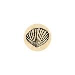 Seashell Small 13 mm