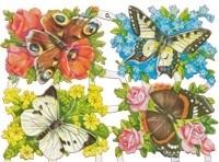 vlinderplanten-top 50