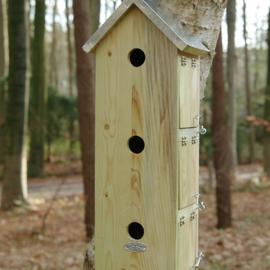 Sparrow flat vertical