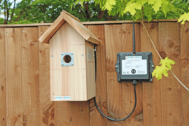Nestbox with Wireless color camera system high resolution