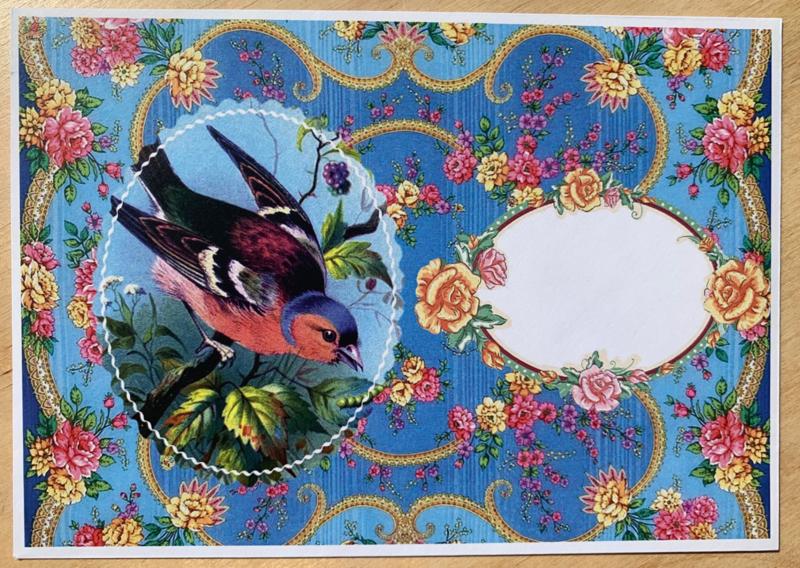 en-Flopje blauw vogel mét of zonder bijzondere kaart