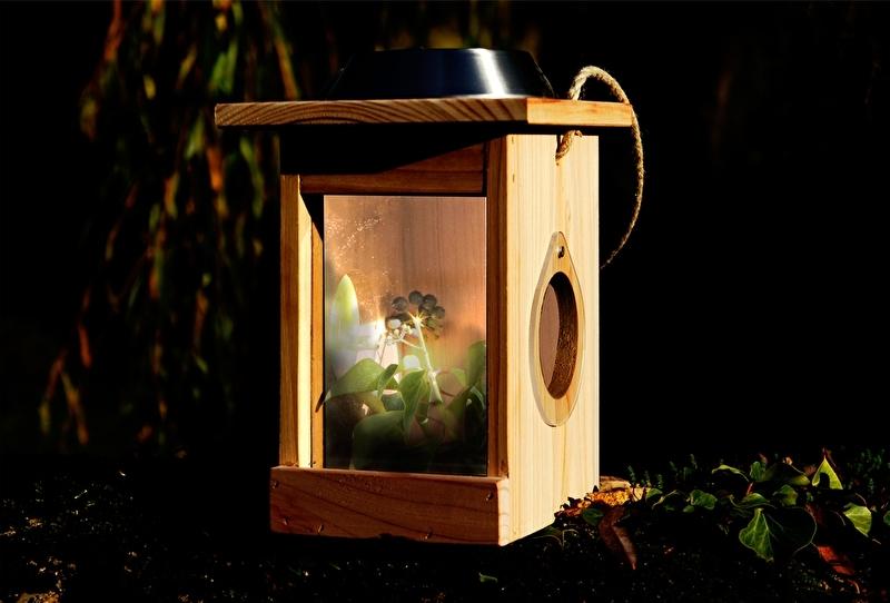Nachtvlinder- en insectenhuis, ledverlichting