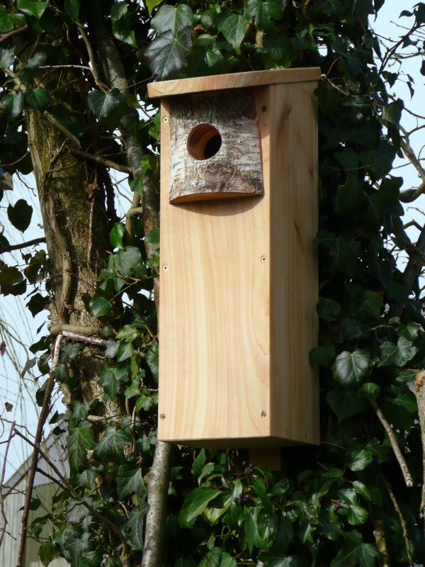 Woodpecker nestbox