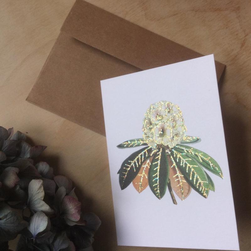 Wenskaart: Rhododendron