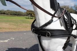 Ideal LeatherTech enkelspan Borst met strengen en strenggespen
