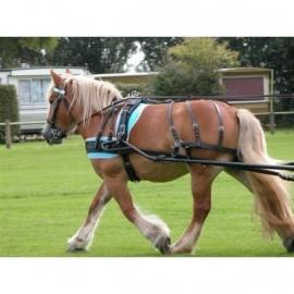 Ideal Trekpaard enkelspan Broek