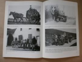 De Nederlandse Trekpaardfokkerij