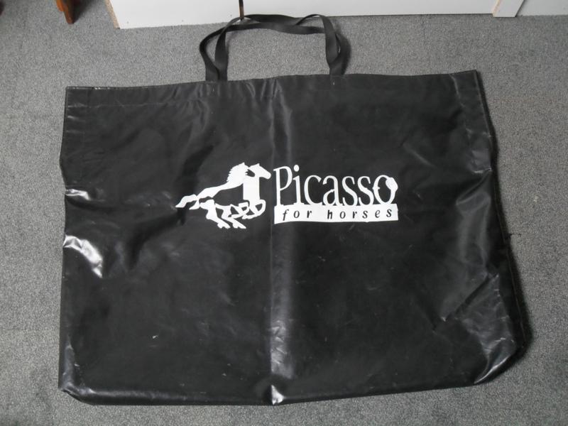 Tuigentas Picasso